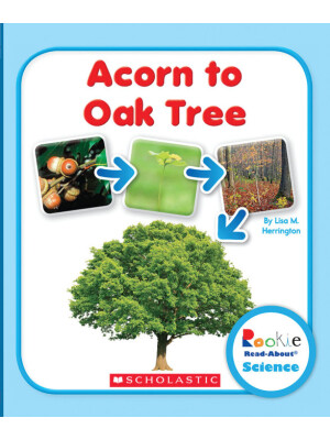"Acorn to Oak Tree (Rookie Read-About Science: Life Cycles) <span class=""author"" >Lisa M. Herrington</span>"